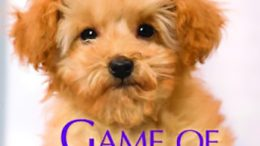 Review GAME OF DOG BONES By Laurien Berenson
